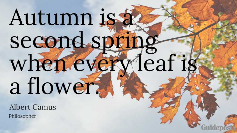 Autumn is a second spring when every leaf is a flower. —Albert Camus