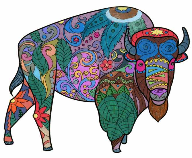 Bison colored by Rhond E. Mayberry, Auburn,  Maine