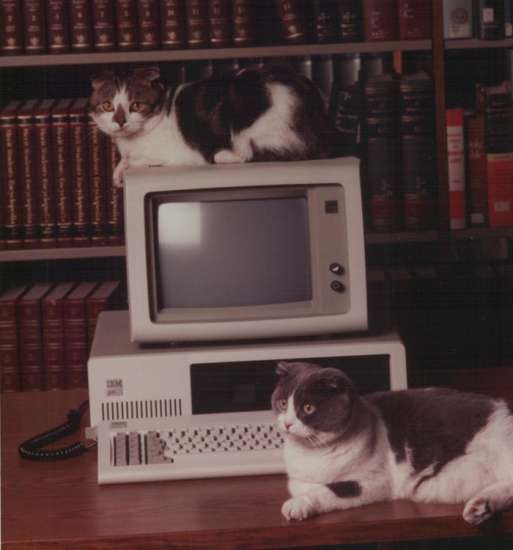 Baker and Taylor on computer monitors