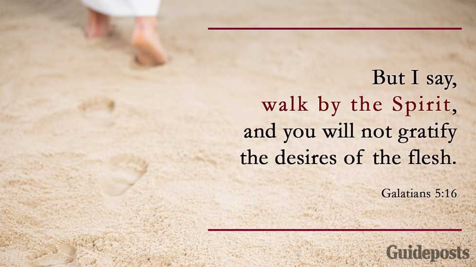 """But I say, walk by the Spirit, and you will not gratify the desires of the flesh."" Galatians 5:16"