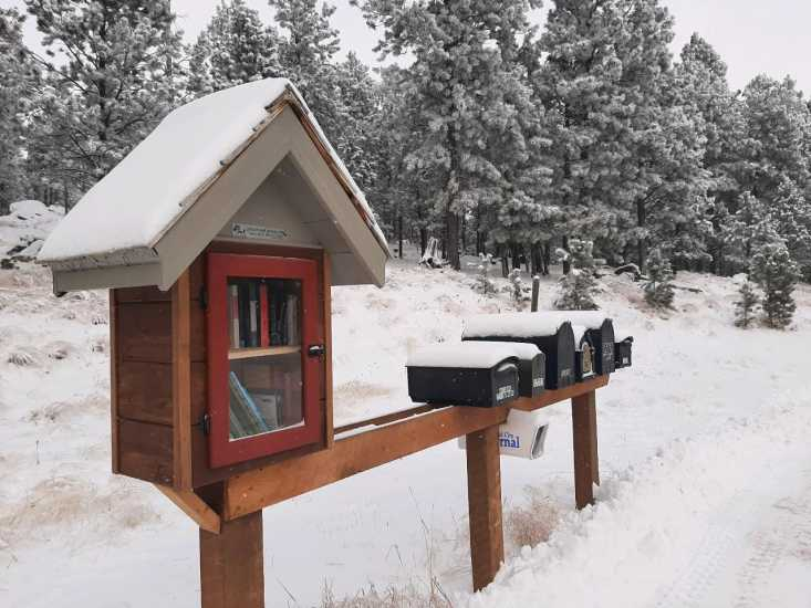 Little Free Library in Custer