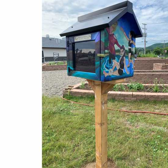 Little Free Library in Wellsville