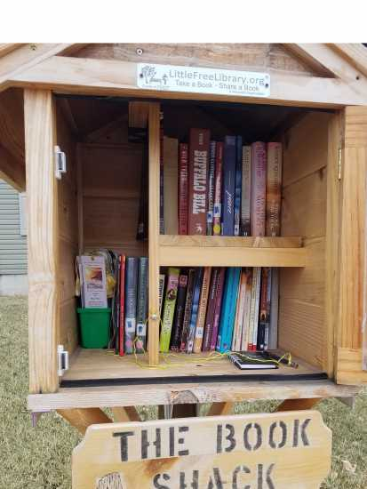 Little Free Library in Newcastle