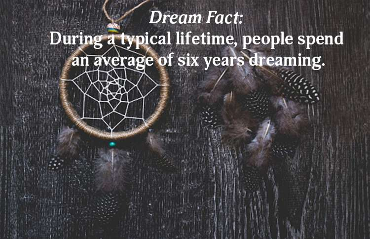 Years Spent Dreaming Dream Fact