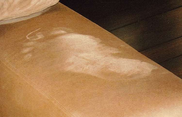 In July 2010, a footprint appeared on a suede club chair in Jim and Janis's home. It doesn't match either of theirs.
