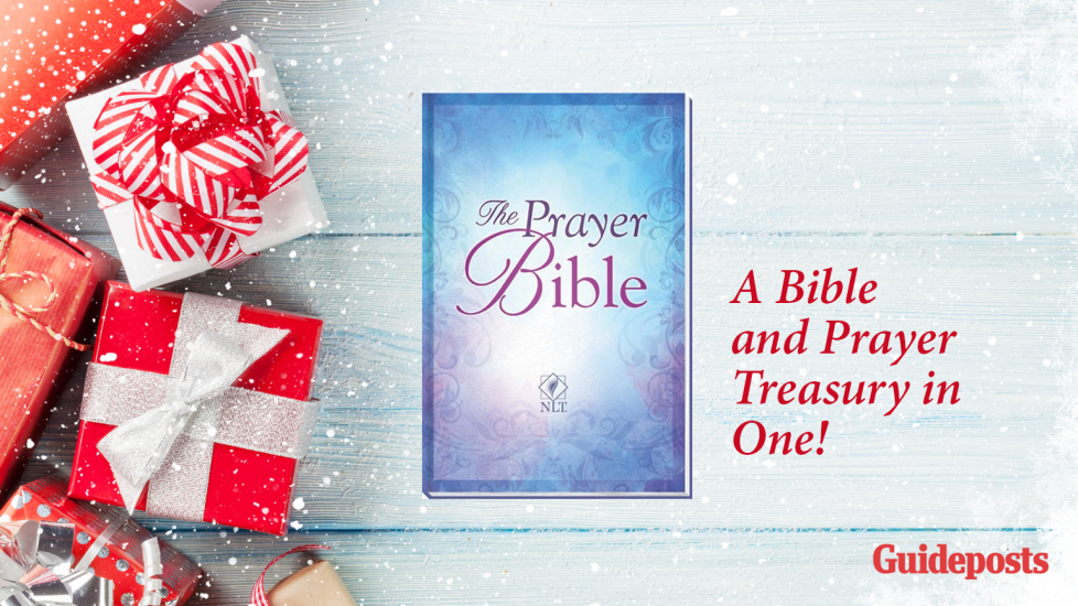 Guideposts holiday gift guide 2017 the prayer bible m4hsunfo