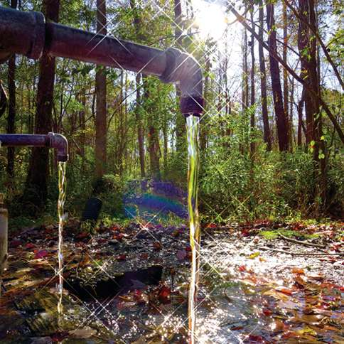 God's Acre Healing Springs near Blackville, South Carolina