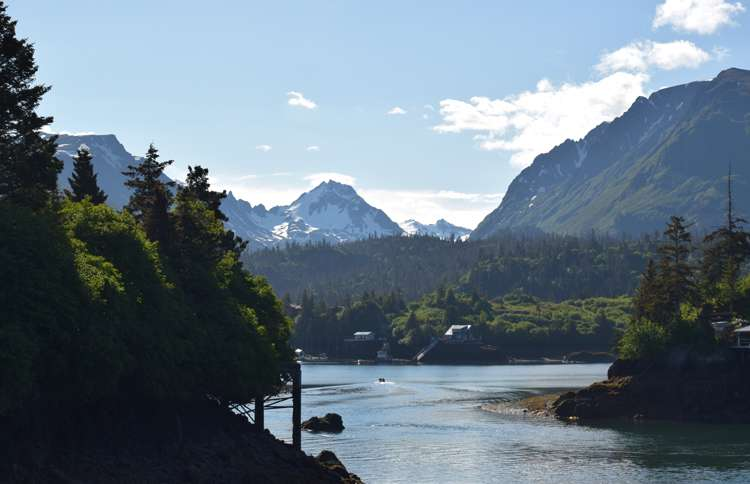 View of Halibut Cove outside Homer, Alaska