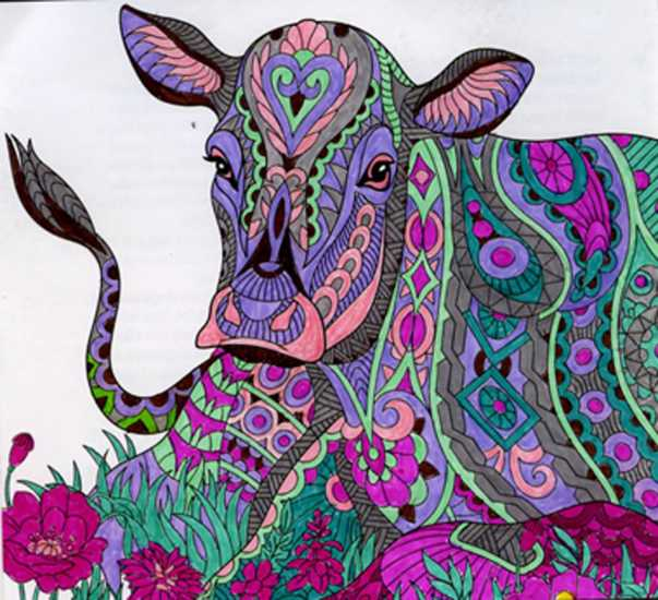Cow colored by Joyce Schaper, Ossian, Indiana