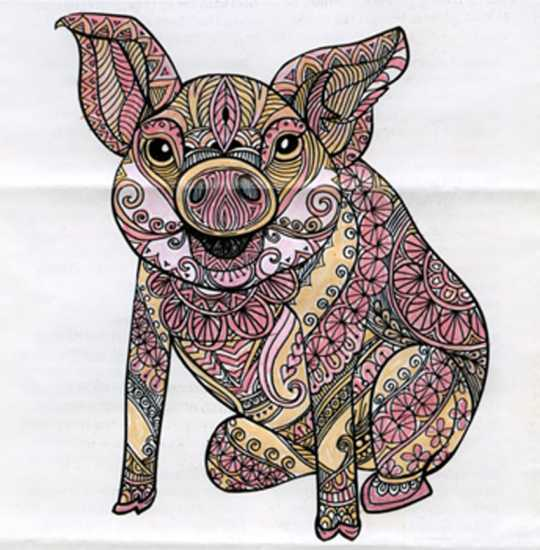 Pig colored by Mary Lou Deemer, Apollo, Pennsylvania