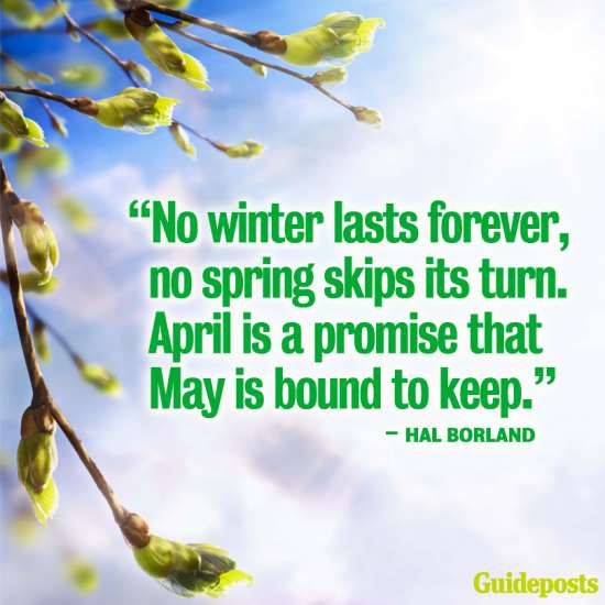 """""""No winter lasts forever, no spring skips its turn. April is a promise that May is bound to keep."""""""