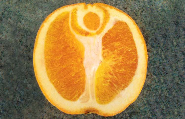 A halved orange reveals an angel