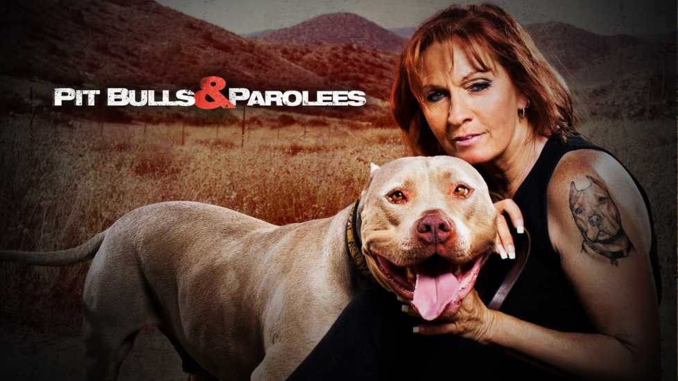 Tia Torres of Pit Bulls and Parolees