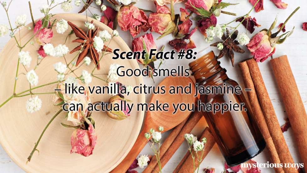 Pleasant smells like vanilla, citrus, and jasmine can actually make you feel better