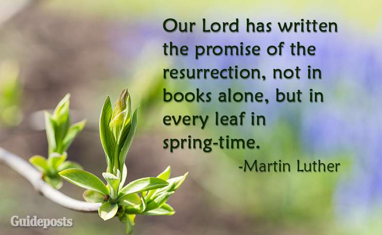 Our Lord has written the promise of the resurrection, not in books alone, but in every leaf in spring-time.  ~Martin Luther