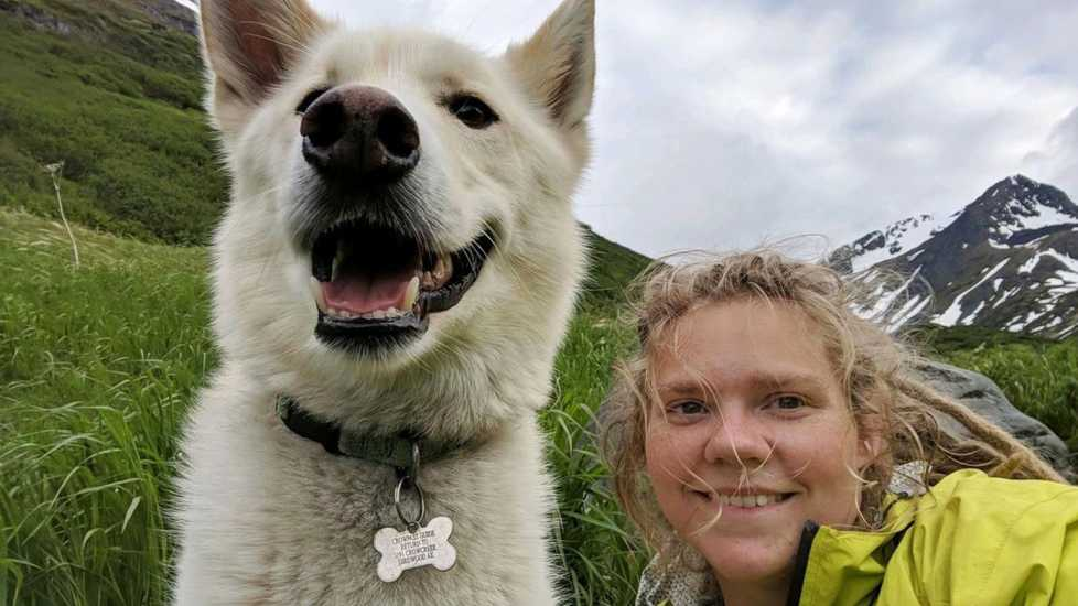 Nanook, a 7-year-old Alaskan husky, helped Amelia Milling when she fell during a hike through Crow Pass and then again crossing Eagle River near Anchorage, Alaska in June, 2018. Milling, 21, is deaf, and was on a 3-day hike 30 miles south of Anchorage. Alaska, a few miles in, her hiking poles snapped, sending her 300 feet down the mountain.