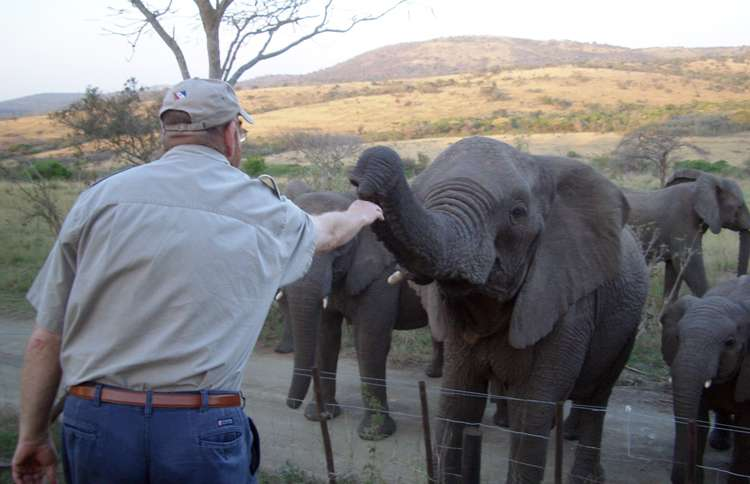 Guideposts: Lawrence reaches out to gently caress one of the elephants he rescued