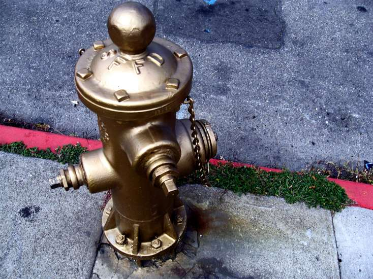 The Golden Fire Hydrant in San Francisco, California