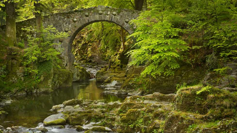 Stone bridge over a river in Northern Ireland