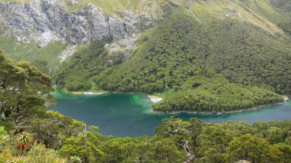 New Zealand's Routeburn Track