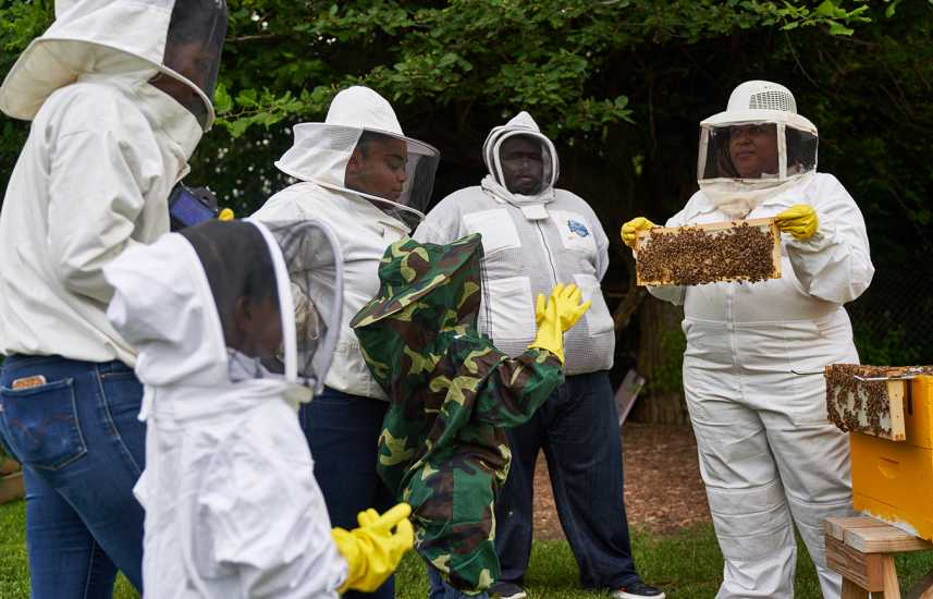 The Founders of Detroit Hives on Their Love of Bees | Guideposts