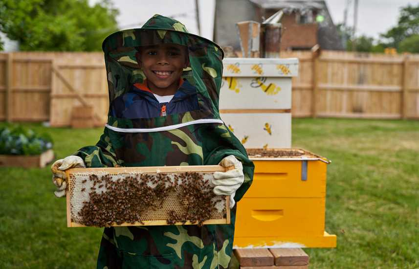 A smiling boy displays a board of bees