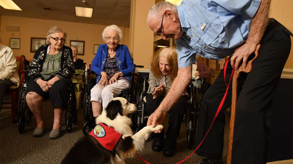 Roger and Jack have become the most recognized duo at Gulf Coast Village. Roger picks up Jack at 8 a.m. and they spend the rest of the day meeting and greeting residents.