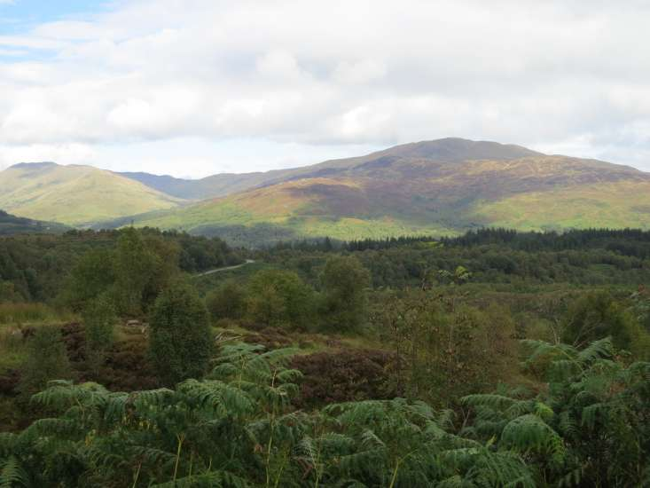 A lush view of the glorious Scottish Highlands