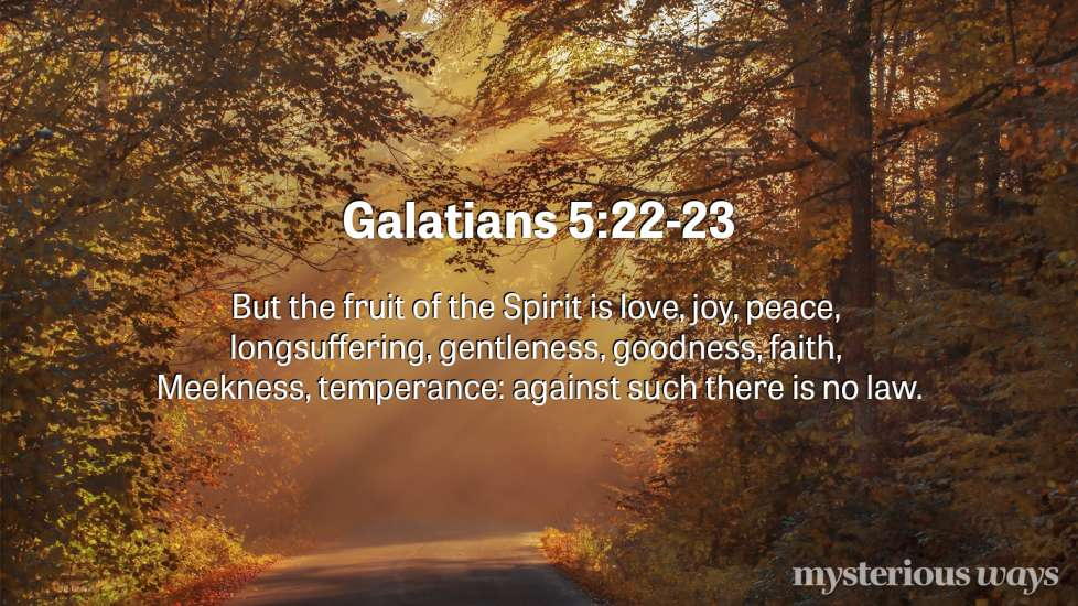 "Galatians 5:22-23 ""But the fruit of the Spirit is love, joy, peace, forbearance, kindness, goodness, faithfulness, gentleness, self-control. Against such things there is no law."""