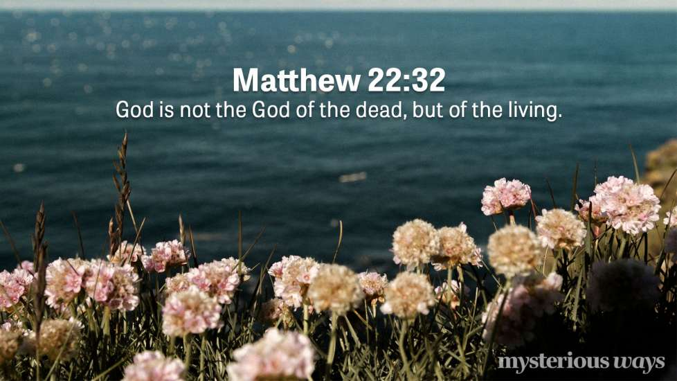 "Matthew 22:32 ""God is not the God of the dead, but of the living."""