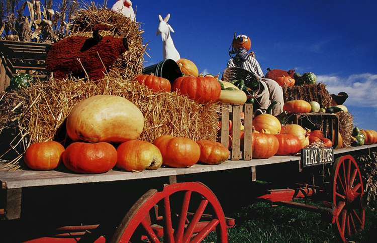 Guideposts: A country wagon decorated with autumn themes advertises hay rides