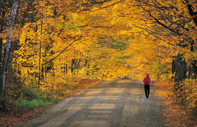 Guideposts: A woman enjoys a long walk through the fall foliage.
