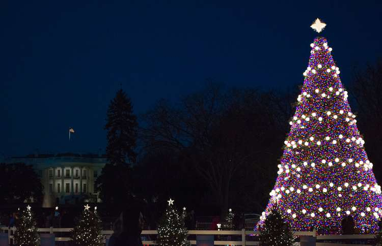 Guideposts: The National Christmas Tree has been a holiday tradition since  1923.