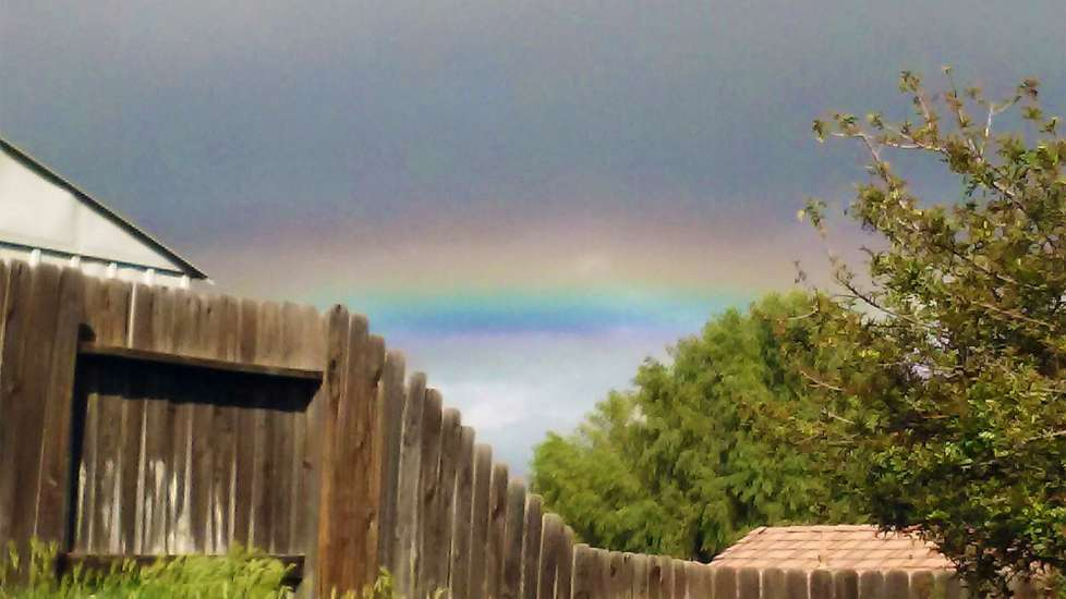 The rainbow that follows a spring shower
