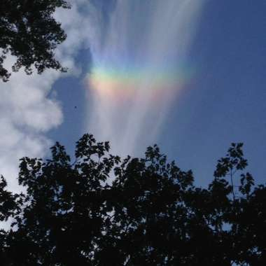 Guideposts: Rainbow before Pope Francis arrived in Central Park, New York City