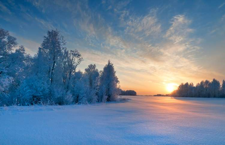 Guideposts: The rising sun shines out over a white winter's landscape