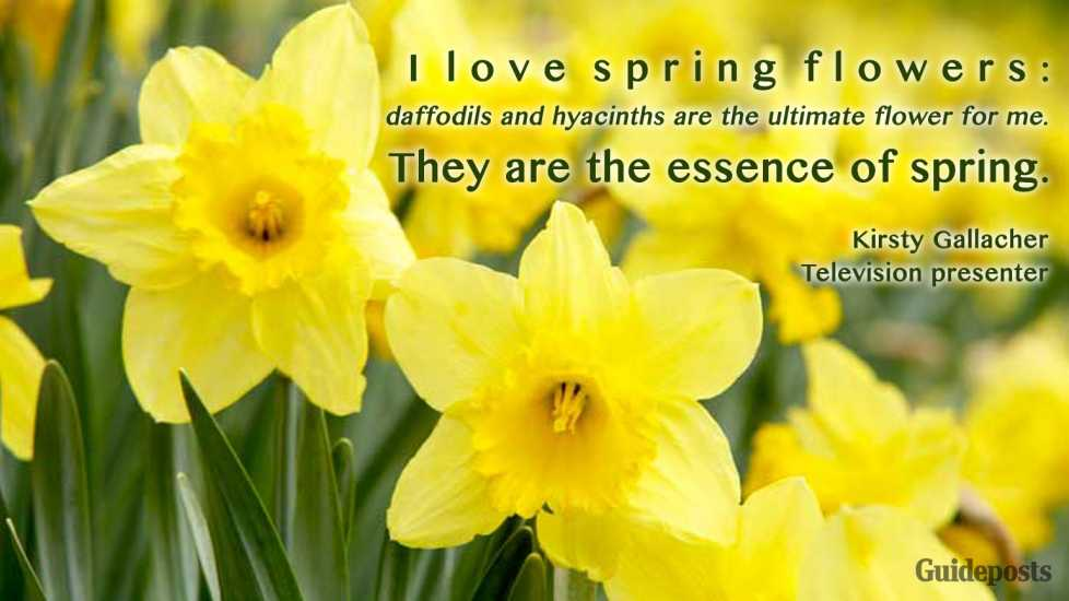 Guideposts: A field of bright yellow daffodils