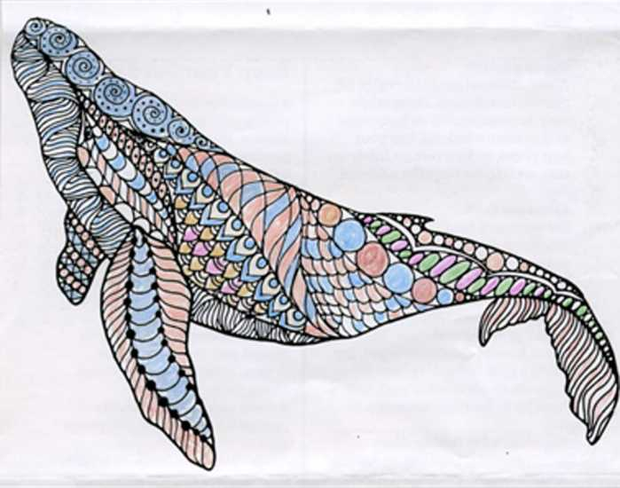 Humpback whale colored by Treva C. Chrisco, Stanfield, North Carolina