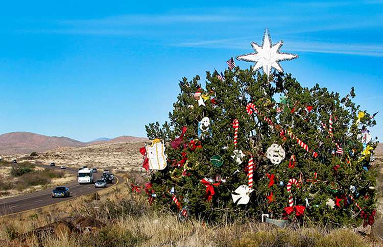 The Mystery Christmas Tree, Interstate 17 in Arizona, near the Sunset Point rest area