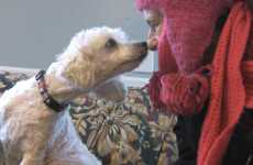 poodle and Sharon Azar at Pets Alive Rescue Shelter