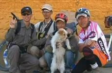 Stray dog with its new owners, a group of cyclists.