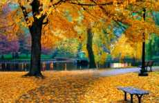 Beautiful autumn scene slide from A Thanksgiving Poem uplifting video.