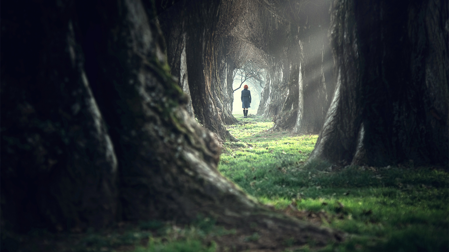 A woman walks alone in a forest
